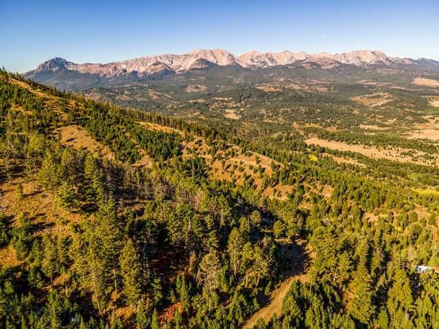 TBD Tbd, Bozeman, MT 59715 (MLS #362846) :: Montana Mountain Home, LLC