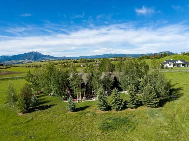 1281 Triple Tree Road, Bozeman, MT 59715 (MLS #362864) :: Montana Mountain Home, LLC