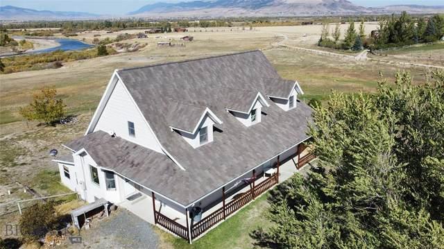 1 Wildrose, Whitehall, MT 59759 (MLS #362892) :: Montana Mountain Home, LLC