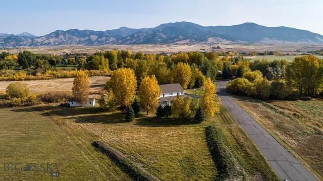 69 Gibson Drive, Bozeman, MT 59718 (MLS #362903) :: Berkshire Hathaway HomeServices Montana Properties