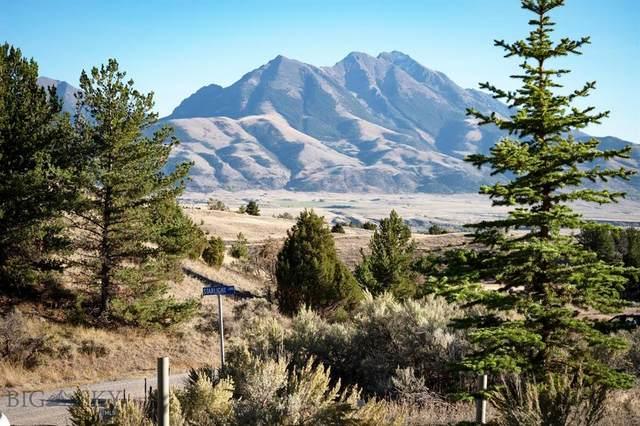 3 Starlight Lane, Emigrant, MT 59027 (MLS #362907) :: Montana Mountain Home, LLC