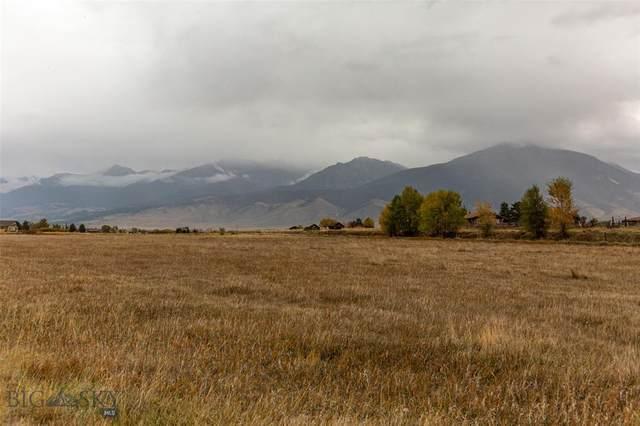 13 Dandelion Drive, Pray, MT 59065 (MLS #363955) :: Berkshire Hathaway HomeServices Montana Properties