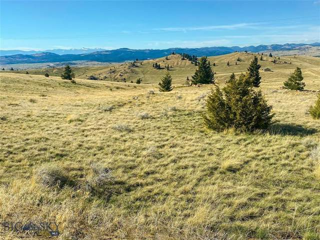 TBD Gelande Mountain, Butte, MT 59701 (MLS #363975) :: L&K Real Estate