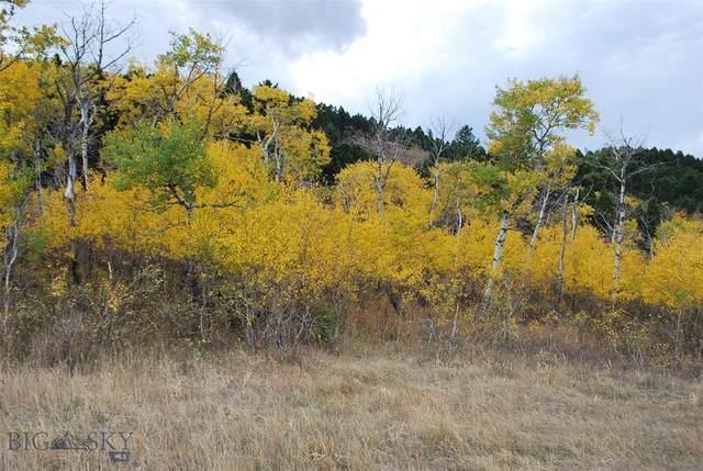 TBD Moose Meadows, Livingston, MT 59047 (MLS #364001) :: Montana Mountain Home, LLC