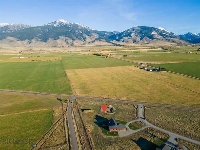 3 Obsidian Lane, Pray, MT 59065 (MLS #364154) :: Montana Mountain Home, LLC