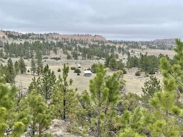 NHN Welch, Miles City, MT 59301 (MLS #364239) :: Montana Mountain Home, LLC