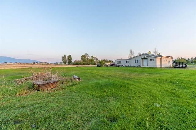 55 Baileys Way, Belgrade, MT 59714 (MLS #364293) :: Montana Life Real Estate