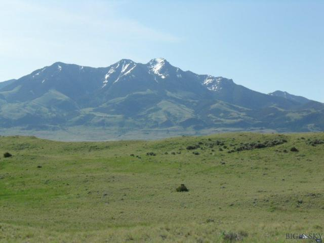 28B Sapphire Lane, Emigrant, MT 59027 (MLS #217399) :: Black Diamond Montana