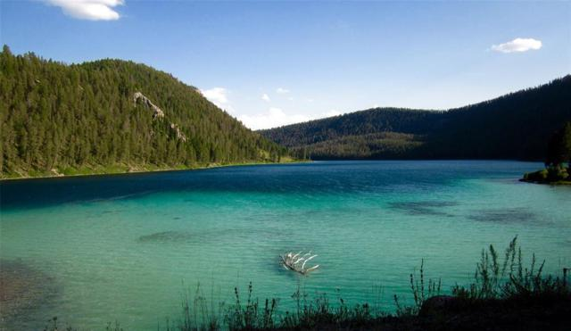 40 Homestead Trail S, Cameron, MT 59720 (MLS #300137) :: Black Diamond Montana