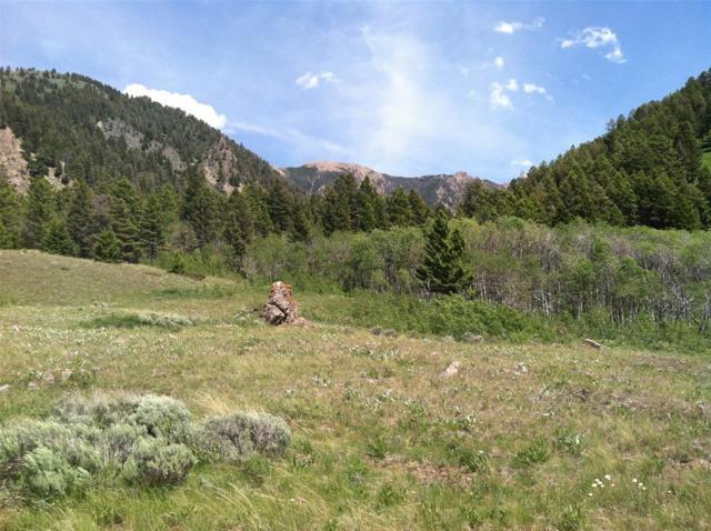 Lot 11 Sportsman's Paradise - Wagon Track, Cameron, MT 59720 (MLS #300200) :: Black Diamond Montana