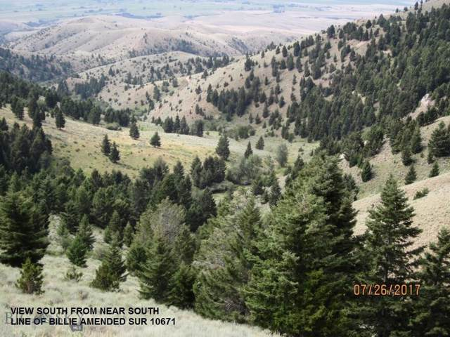 tbd Tobacco Root Mountains South, Twin Bridges, MT 59754 (MLS #304031) :: Montana Life Real Estate