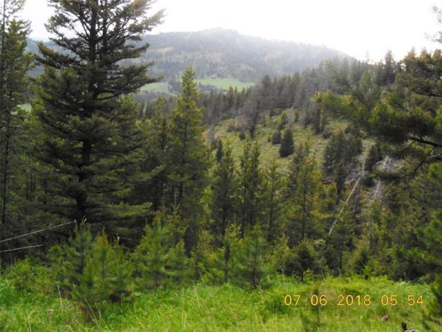 TBD Mountain Elk Road, Bozeman, MT 59715 (MLS #321437) :: Hart Real Estate Solutions