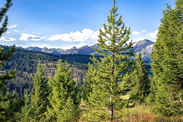 Tract 7, 595 Ousel Falls View Road, Big Sky, MT 59716 (MLS #322110) :: Montana Life Real Estate