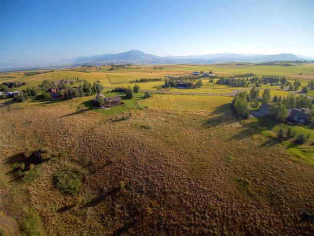 364 Wintergreen Lane, Bozeman, MT 59715 (MLS #324238) :: Black Diamond Montana