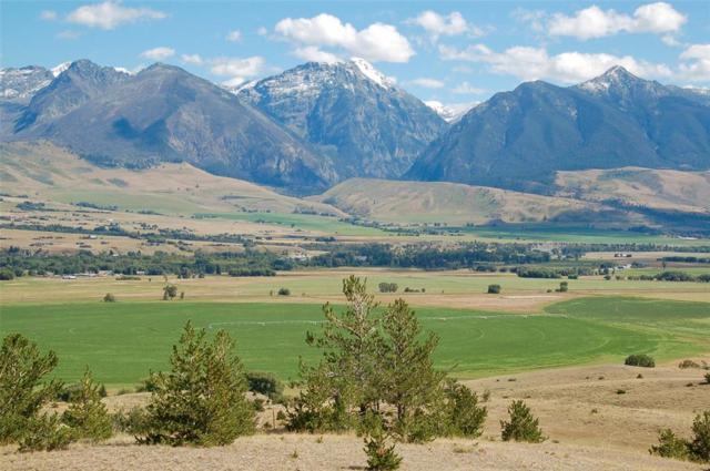 TBD Spring Creek Hills Road, Livingston, MT 59047 (MLS #325939) :: Black Diamond Montana