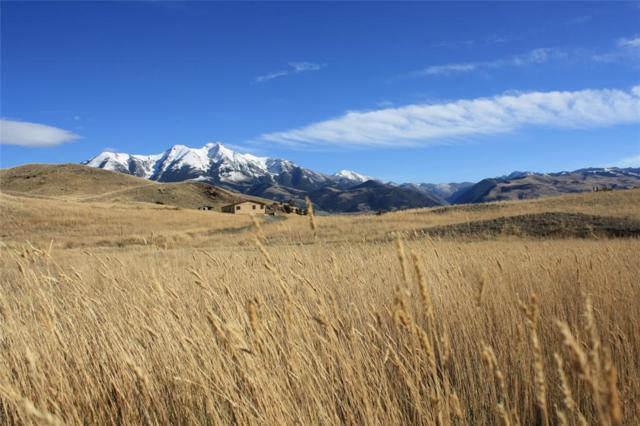 Lot 25 B Arcturus Drive, Emigrant, MT 59027 (MLS #327099) :: Black Diamond Montana