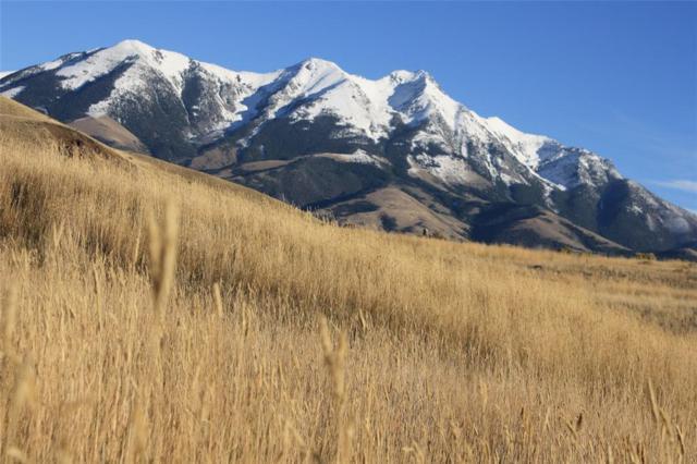 Lot 25C Arcturus Drive, Emigrant, MT 59027 (MLS #327100) :: Black Diamond Montana
