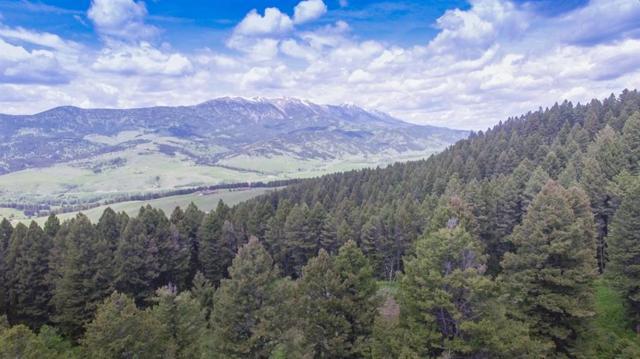 TD Bridger Woods, Bozeman, MT 59715 (MLS #329348) :: Hart Real Estate Solutions