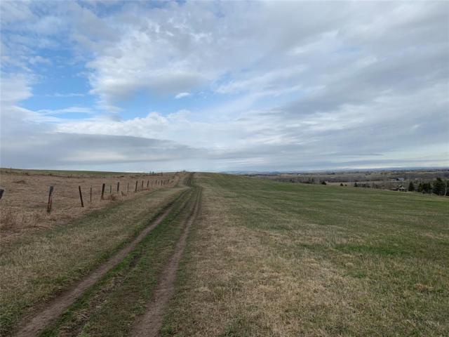 398 Triple Tree Road, Bozeman, MT 59715 (MLS #329454) :: Black Diamond Montana