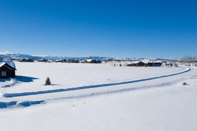 TBD Hyalite View Dr, Bozeman, MT 59718 (MLS #329828) :: Black Diamond Montana