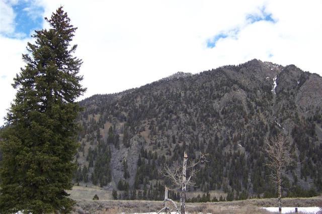 Lot 40B Sportsman's Paradise, Cameron, MT 59720 (MLS #331001) :: Black Diamond Montana