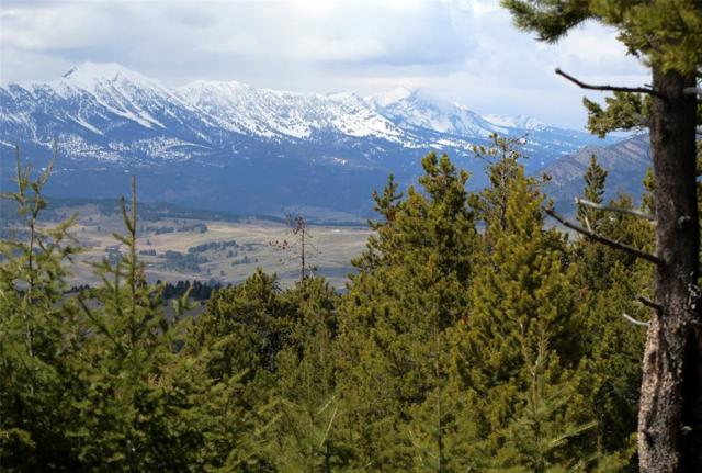 tbd Peak Road, Bozeman, MT 59715 (MLS #332338) :: Black Diamond Montana