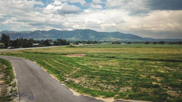 Lot 2 Pleasant Valley Minor Subdivision, Bozeman, MT 59718 (MLS #333541) :: Hart Real Estate Solutions