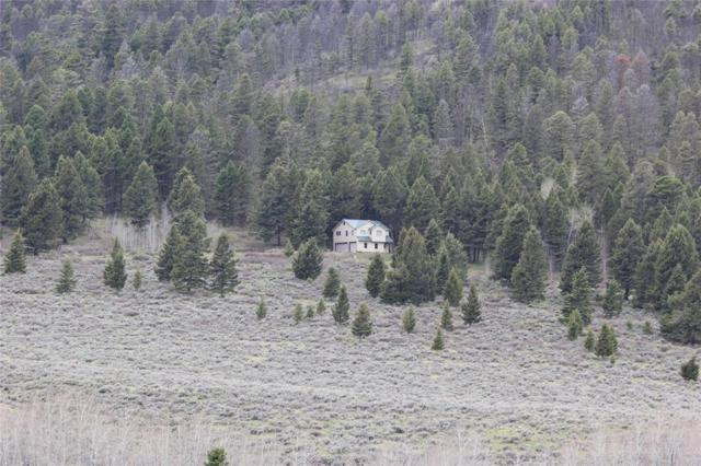 90 Buffalo Lance Road, Cameron, MT 59720 (MLS #333818) :: Black Diamond Montana