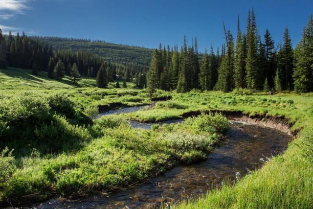 TBD Beehive Basin Road, Big Sky, MT 59716 (MLS #334443) :: Black Diamond Montana