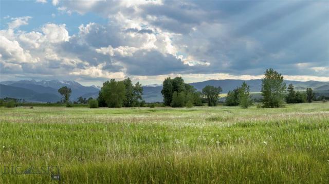 554 Bushnell, Gallatin Gateway, MT 59730 (MLS #335306) :: Montana Life Real Estate