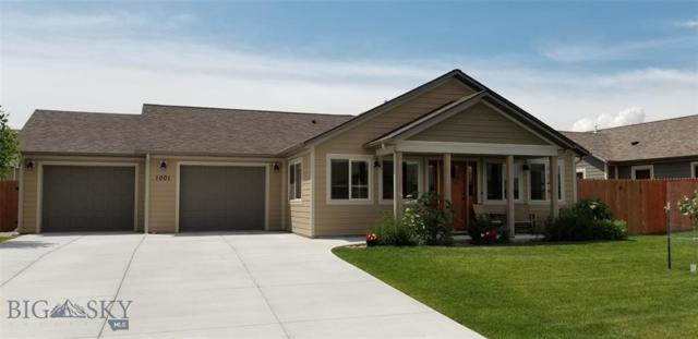 1001 Meriwether E, Livingston, MT 59047 (MLS #335811) :: Black Diamond Montana