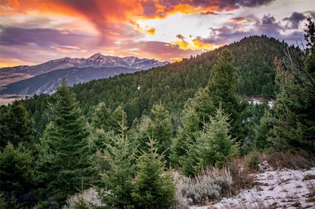 1 W Seven Point Road, Livingston, MT 59047 (MLS #340552) :: Black Diamond Montana