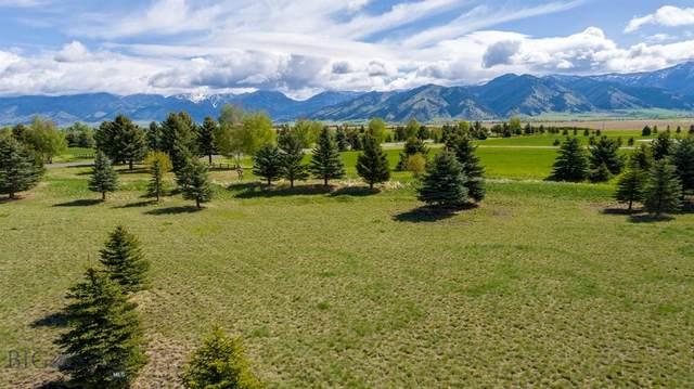 TBD Bridger Lake Drive, Bozeman, MT 59718 (MLS #345003) :: Black Diamond Montana