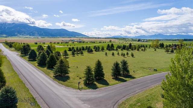 TBD Bridger Lake Drive, Bozeman, MT 59718 (MLS #345005) :: Montana Home Team