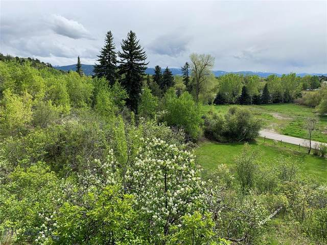 TBD S Church Avenue, Bozeman, MT 59715 (MLS #345695) :: L&K Real Estate