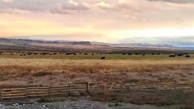 304 Sugarloaf Mountain Farm, Glen, MT 59732 (MLS #346745) :: Montana Life Real Estate