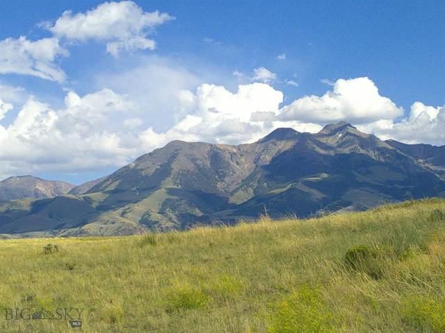 Lot 32-D Hesperus Road, Emigrant, MT 59027 (MLS #348593) :: Black Diamond Montana