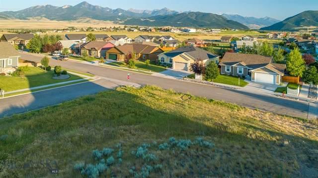 1219 Ridgeview Trail, Livingston, MT 59047 (MLS #348607) :: Hart Real Estate Solutions