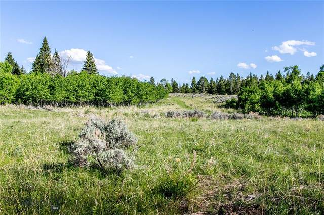 Lot 33A Sun West Ranch, Cameron, MT 59720 (MLS #349425) :: Berkshire Hathaway HomeServices Montana Properties