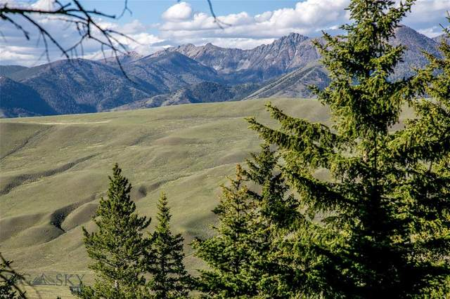 Lot 35 Sun West Ranch, Cameron, MT 59720 (MLS #349535) :: Berkshire Hathaway HomeServices Montana Properties