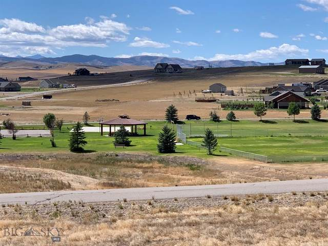 TBD Sharptail Place Lot 175, Three Forks, MT 59752 (MLS #349850) :: Montana Life Real Estate