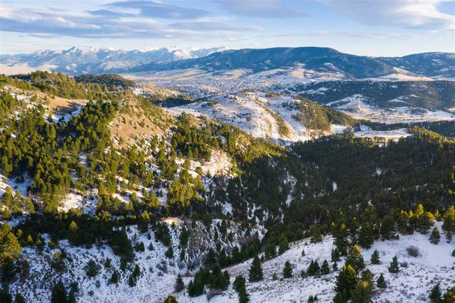 TBD Skyline Drive, Bozeman, MT 59715 (MLS #350297) :: Montana Home Team