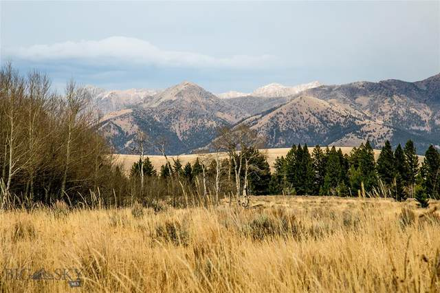 Lot 39 Sun  West Ranch, Cameron, MT 59720 (MLS #350398) :: L&K Real Estate