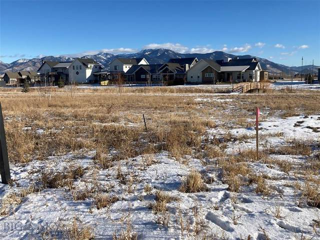 1460 Windrow Drive, Bozeman, MT 59718 (MLS #354240) :: L&K Real Estate