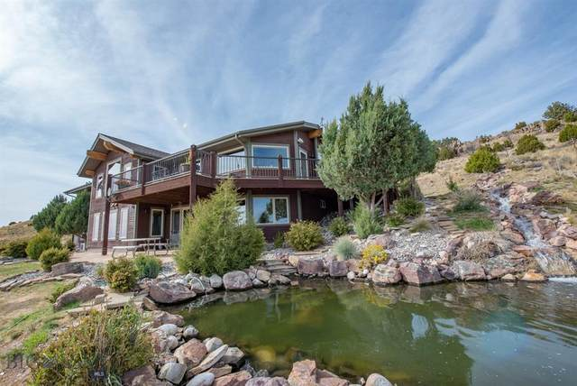 145 S River Connection Road, Manhattan, MT 59741 (MLS #354622) :: Montana Home Team