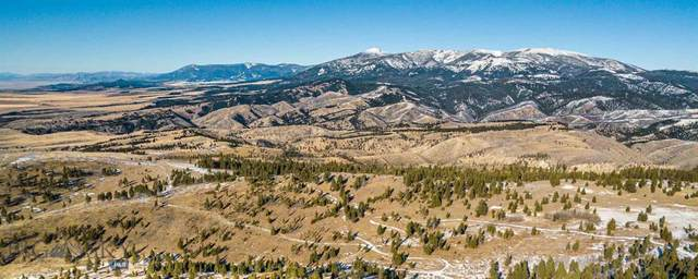 88 Upper Greyson Creek Road, Townsend, MT 59644 (MLS #354766) :: L&K Real Estate