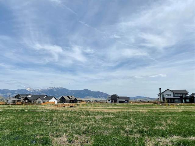 1594 Windrow Drive, Bozeman, MT 59718 (MLS #355018) :: L&K Real Estate