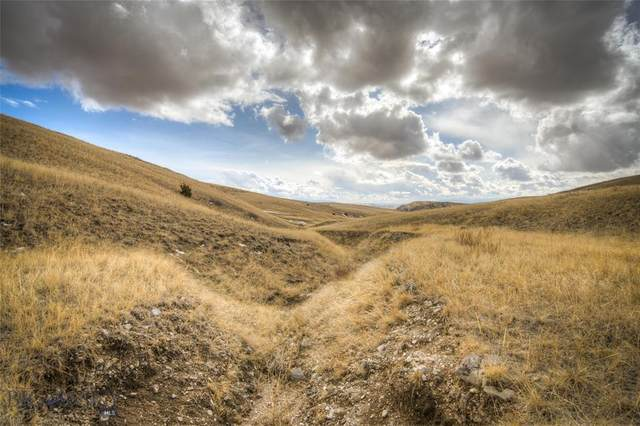 Lot 176 Tbd Hilltop Road, Manhattan, MT 59741 (MLS #355629) :: Coldwell Banker Distinctive Properties