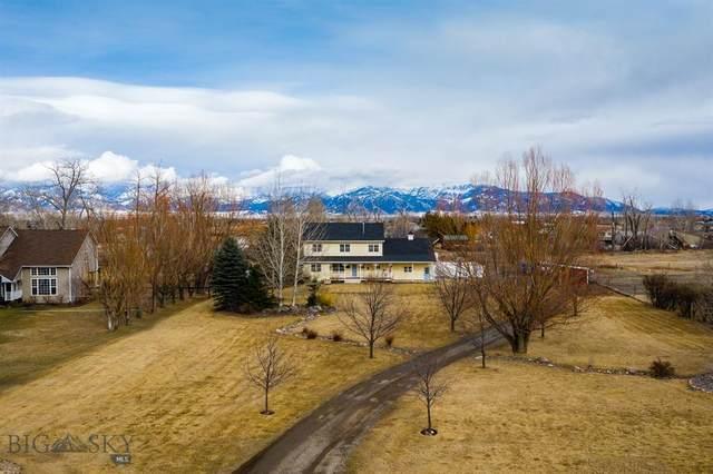 1650 Bandollero Drive, Belgrade, MT 59714 (MLS #355975) :: Montana Life Real Estate