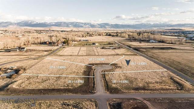 TBD Dobbins Court, Bozeman, MT 59718 (MLS #356876) :: Montana Life Real Estate